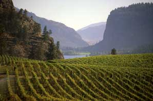 McIntyre Bluff-BC Wine Country-James O'Mara